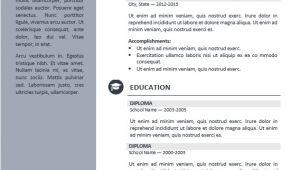 Professional Resume Design Templates orienta Free Professional Resume Cv Template