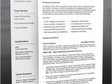 Professional Resume Design Templates Professional Resume Template Free Can Help You to Start