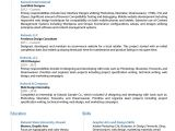 Professional Resume Design Templates Template for Professional Resume In Word Sample Resume