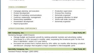 Professional Resume Examples 7 Samples Of Professional Resumes Sample Resumes