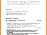Professional Resume format Word Doc 5 Resume Word Doc Template Professional Resume List