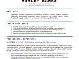 Professional Resume format Word Document Resume Template Word Doc Fee Schedule Template