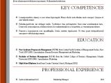 Professional Resume format Word Document Word Resume Templates 2016