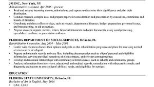 Professional Resume Layout Advanced Resume Templates Resume Genius