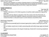 Professional Resume Professional Resume Templates for College Graduates
