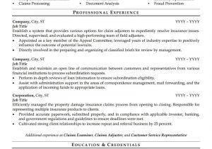 Professional Resume Samples Insurance Agent Resume Sample Professional Resume