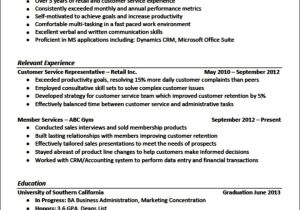 Professional Resume Samples Sample Resume format for Experienced It Professionals