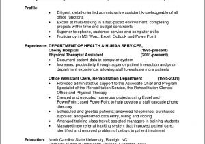 Professional Resume Samples Sample Resume Professional format