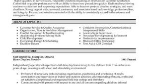 Professional Resume Services Click Here to Download This Customer Service Professional