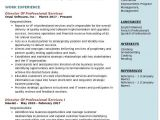 Professional Resume Services Director Of Professional Services Resume Samples Qwikresume