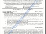 Professional Resume Services Professional Cv Writing Service Ireland Welcome to the