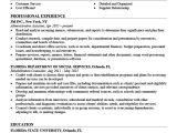 Professional Resume Template Professional Resume Templates Free Download Resume Genius