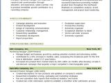 Professional Resume Templates Free Download 17 Best Ideas About Professional Resume Template On
