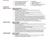 Professional Resume Templates Free Download Business Resume Templates Resume Builder