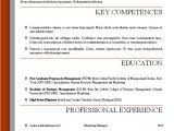 Professional Resume Word Template Word Resume Templates 2016