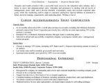 Professional Sales Resume Sales Professional Resume