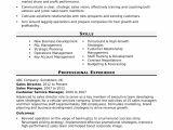 Professional Skills for Resume Sales Director Resume Sample Monster Com