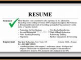 Professional Summary Resume Sample Professional Summary Resume Examples Example Of Resumes