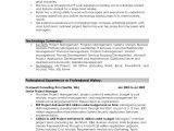 Professional Summary Resume Sample Professional Summary Resume Examples Professional Resume