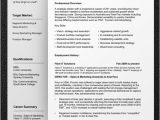 Proffessional Resume Template Professional Resume Template Resume Cv