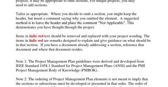 Project Management Proposal Template Doc Best Photos Of Sample Program Management Plans Project
