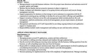 Project Manager Job Application Resume Application Project Manager Resume Samples Velvet Jobs