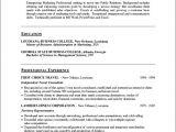 Public Relations Resume Template Public Relations Resume Example Sample Public Relations