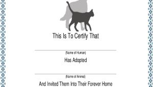 Puppy Certificate Templates Dog Certificate Template 9 Free Pdf Documents Download