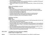 Qa Analyst Resume Sample Senior Qa Analyst Resume Samples Velvet Jobs