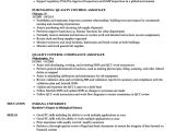 Quality Control Resume In Word format Quality Control associate Resume Samples Velvet Jobs