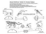 Rainforest Animal Templates Best Photos Of Rainforest Animal Template Printables