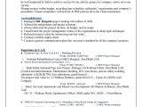 Ran Engineer Resume Omran Cv