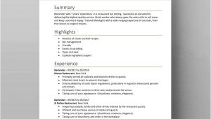 Ready Resume format In Word Resume Templates Examples Free Word Doc