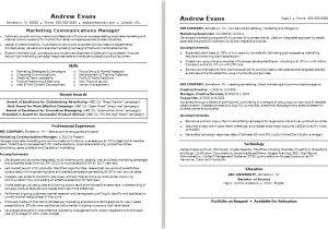 Record Label Resume Sample Record Label Resume Sample Megakravmaga Com