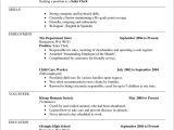 Resume Builder Template Free Printable Resume Builder Templates Resume Resume