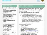 Resume Engineer Malaysia Resume Taufeq Abd Aziz