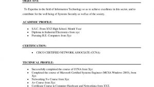 Resume for Bca Student 12 Cv Of Bca Student Letter Setup