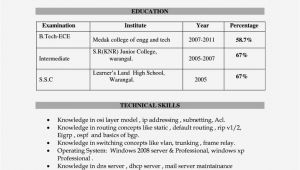 Resume for Degree Students Degree Resume for Freshers Resume Template Cover Letter