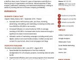 Resume for Sales and Marketing In Word format Marketing Resume Sample Writing Tips Resume Genius