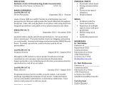 Resume for Undergraduate College Student Sample College Student Resume 8 Examples In Pdf Word