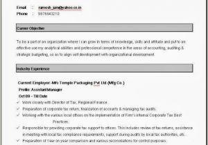 Resume format by Word Simple Resume format In Word