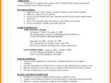 Resume format Examples for Job 8 Cv Sample for Job Application theorynpractice