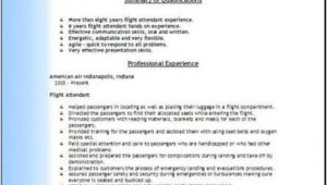 Resume format for Airlines Job Airlines Resume Occupational Examples Samples Free Edit