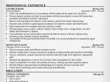 Resume format for Bank Job Banking Resume Sample Resumecompanion Com Finance