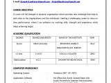 Resume format for Bank Job Fresher 10 Sample Resume for Banking Jobs Payment format