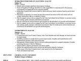 Resume format for Company Job Intercompany Analyst Resume Samples Velvet Jobs