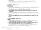 Resume format for Corporate Job Corporate Accountant Resume Samples Velvet Jobs