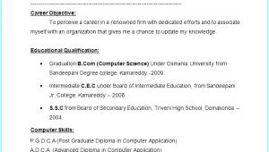 Resume format for Fresher Free Download In Ms Word 2007 10 Fresher Resumes Free Download Invoice Templatez
