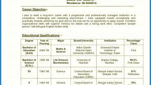 Resume format for Fresher Teacher Job In India Resume Of A Teacher India Teachers Resume format India