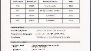Resume format for Freshers Fresher Resume format for Mca Student